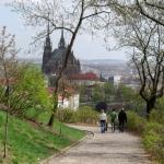 City report: Brno
