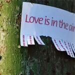 d.i.y.: love