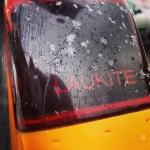 Weather Report: March-April | Orai: kovas-balandis