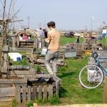 Berlin: Community gardening & Tempelhof case | Bendruomenių daržai & oro uostas