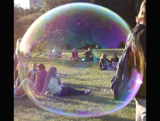 bubble-alytus